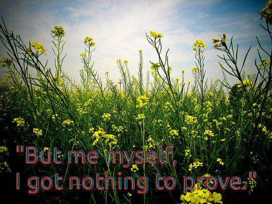 But me myself I got nothing to prove.